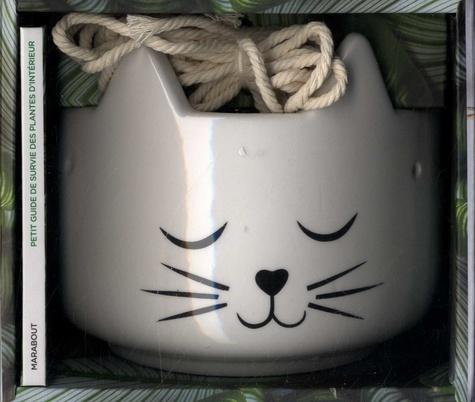 Chat pousse ! Et Chat décore