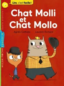 chat-molli-chat-mollo